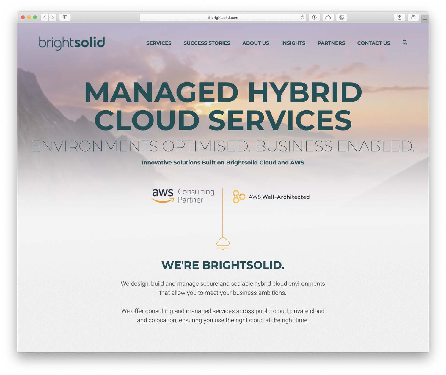Screenshot of Brightsolid website.